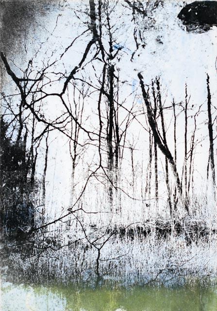 Intagliotypie, 20x30 cm, Schierensee