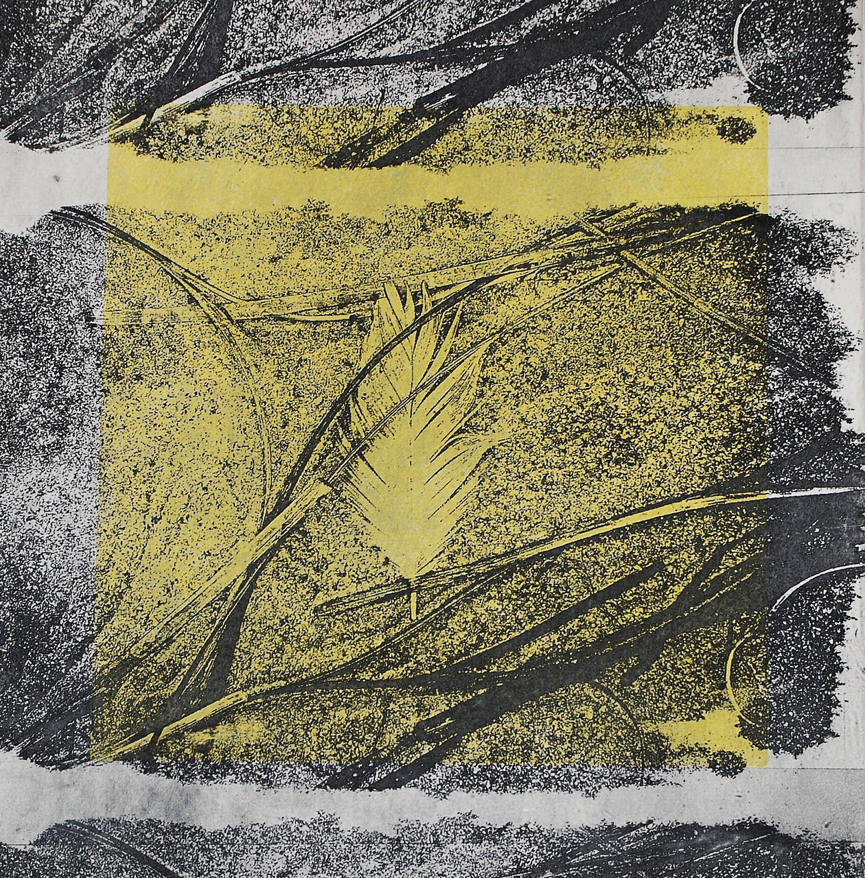 Intagliotypie, 30x30 cm, Feder am Strand