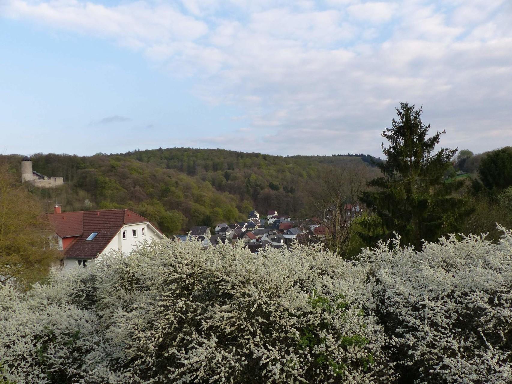 Blick von Terrasse