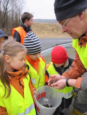 "Eitorfer NABU-Kindergruppe ""Waldfledermäuse"" beim Krötensammeln. (Foto: Ulrich Kuczkowiak)"