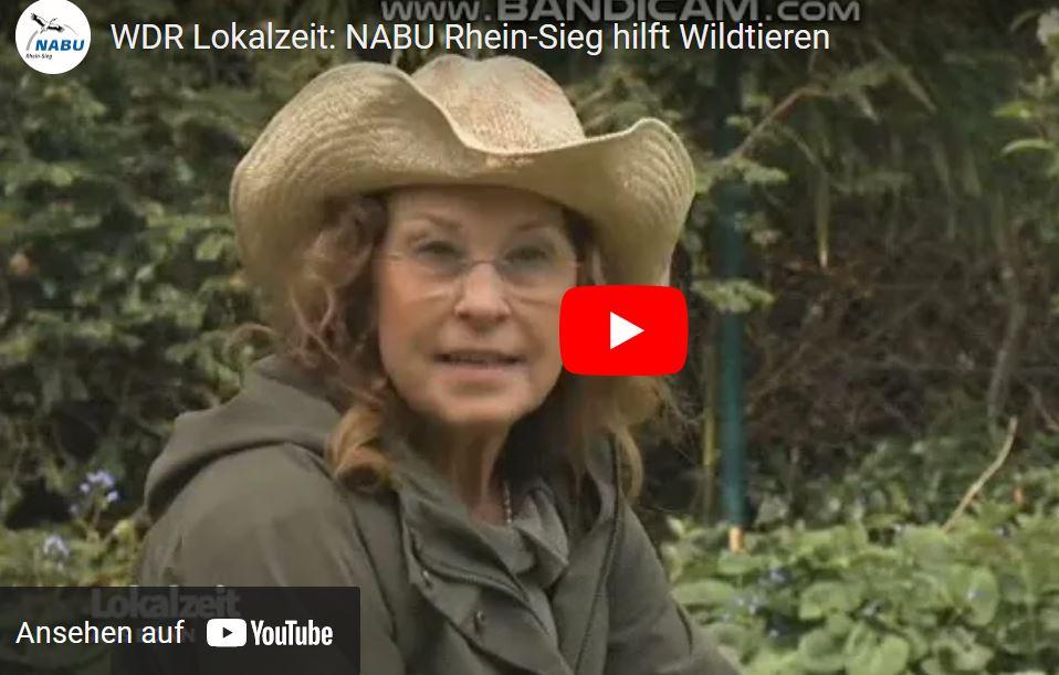 NABU-Wildtierstation in der WDR Lokalzeit