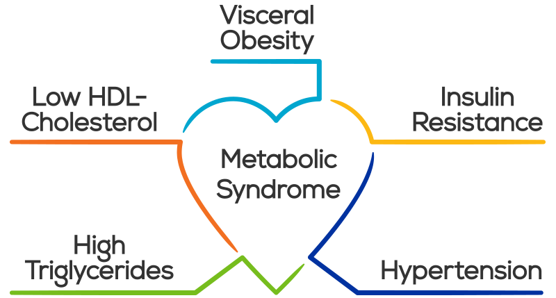 Metabolic Syndrome is a negative consequence of poor nutrition choices