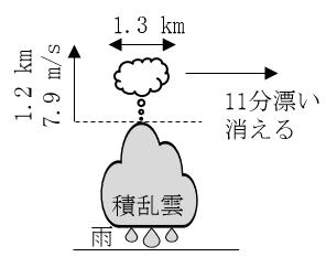 図 ジャンピングシーラスの模式図