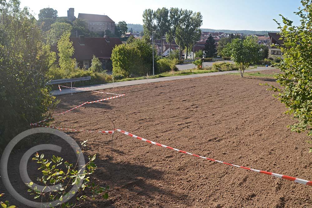 Einsaat Wildblumenwiese + Säume: Die Flächen wurden unterteilt, um unterschiedliche Mischungen auszusäen (13.09.2020)