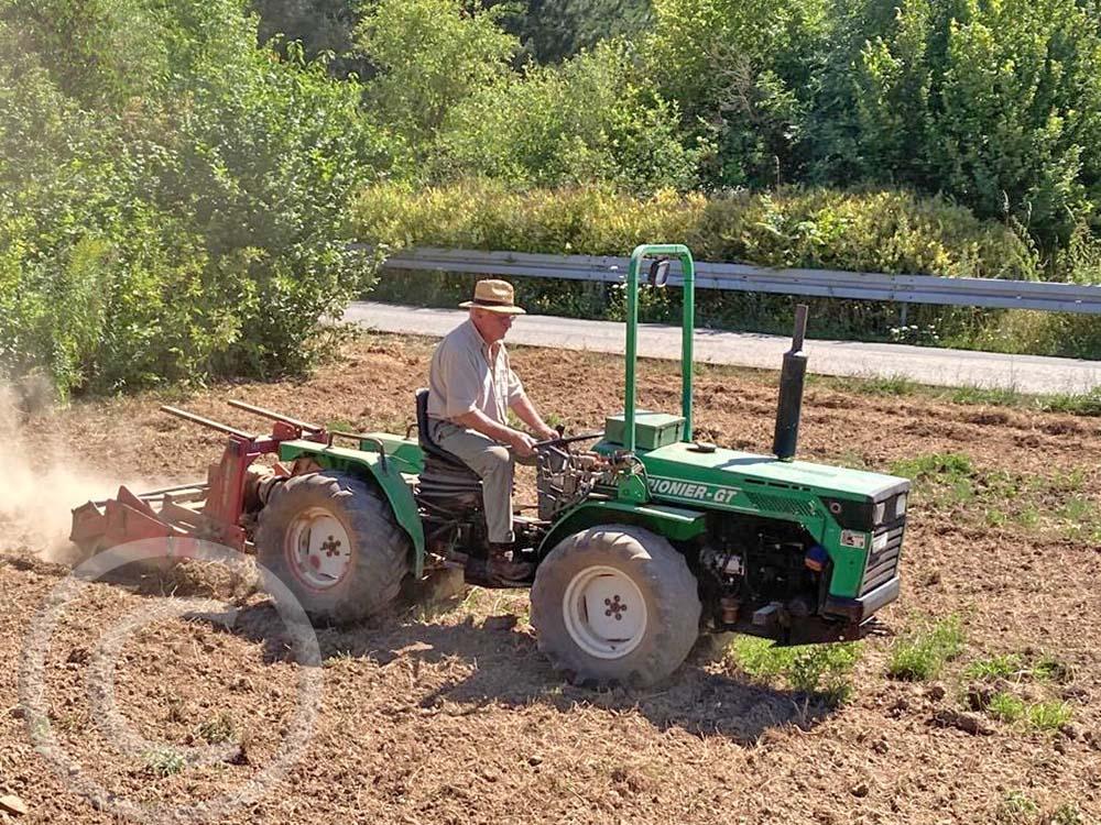 2. Bodenbearbeitung: Über Sommer wird der Boden im zweiwöchigen Abstand gefräst, um durchwachsenden Bewuchs zu zerstören und auszutrocken (30.07.2020)