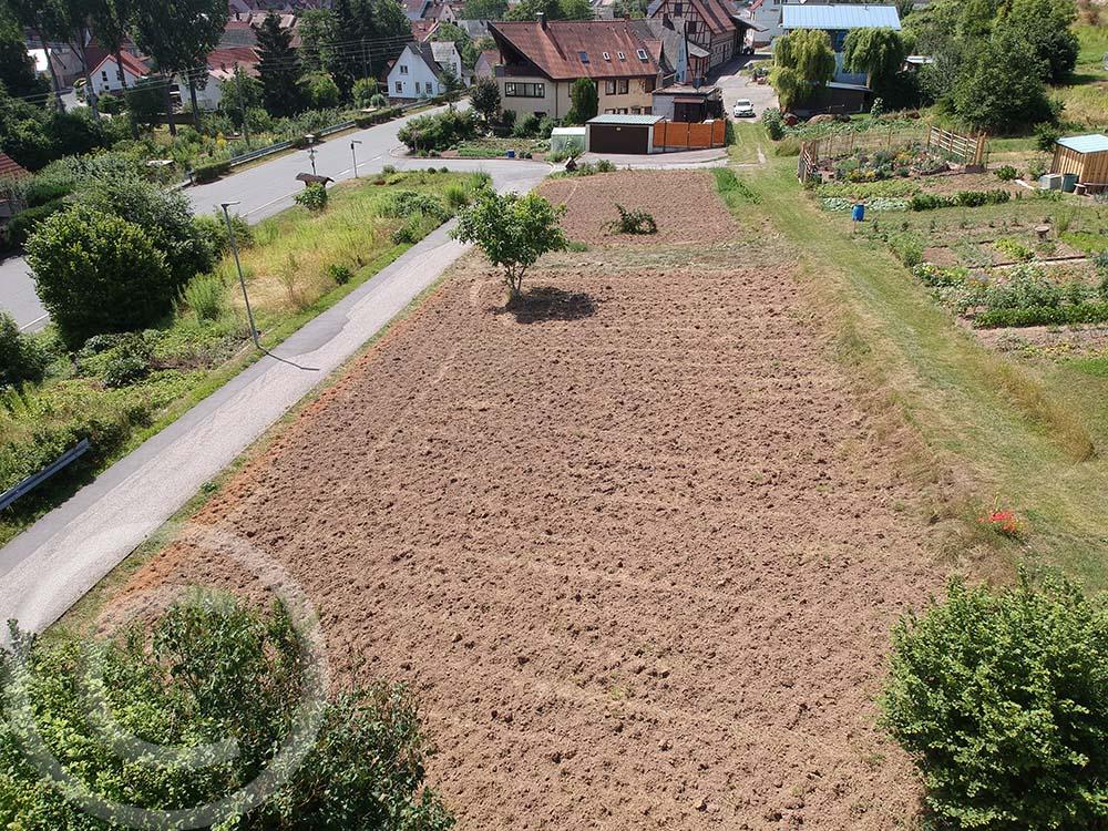 Luftbild: In der Mitte bleibt ein Grasstreifen stehen, er gehört einem anderen Eigentümer (19.07.2020)