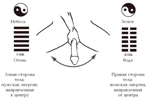 Ерекція у чоловіків фото фото 191-363
