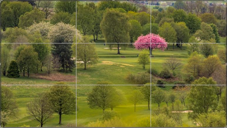 Foto Tipps für Anfänger - Teil 2 Bildaufbau