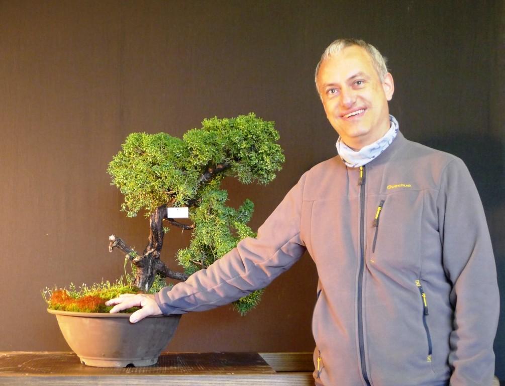 ANTONIO  Juniperus chinensis var Kyushu