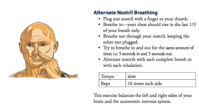 An illustration on how to perform alternate nostril breathing