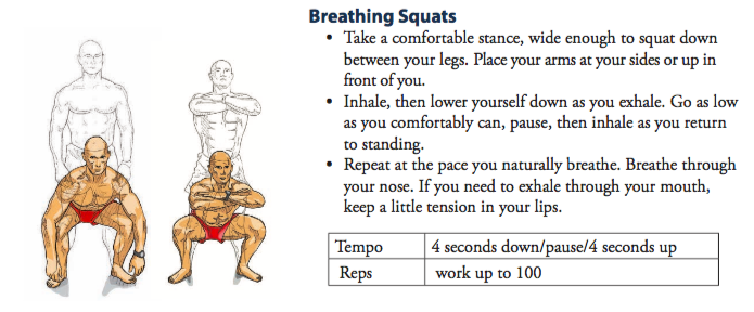 A pictorial illustration on how to perform a breathing squat