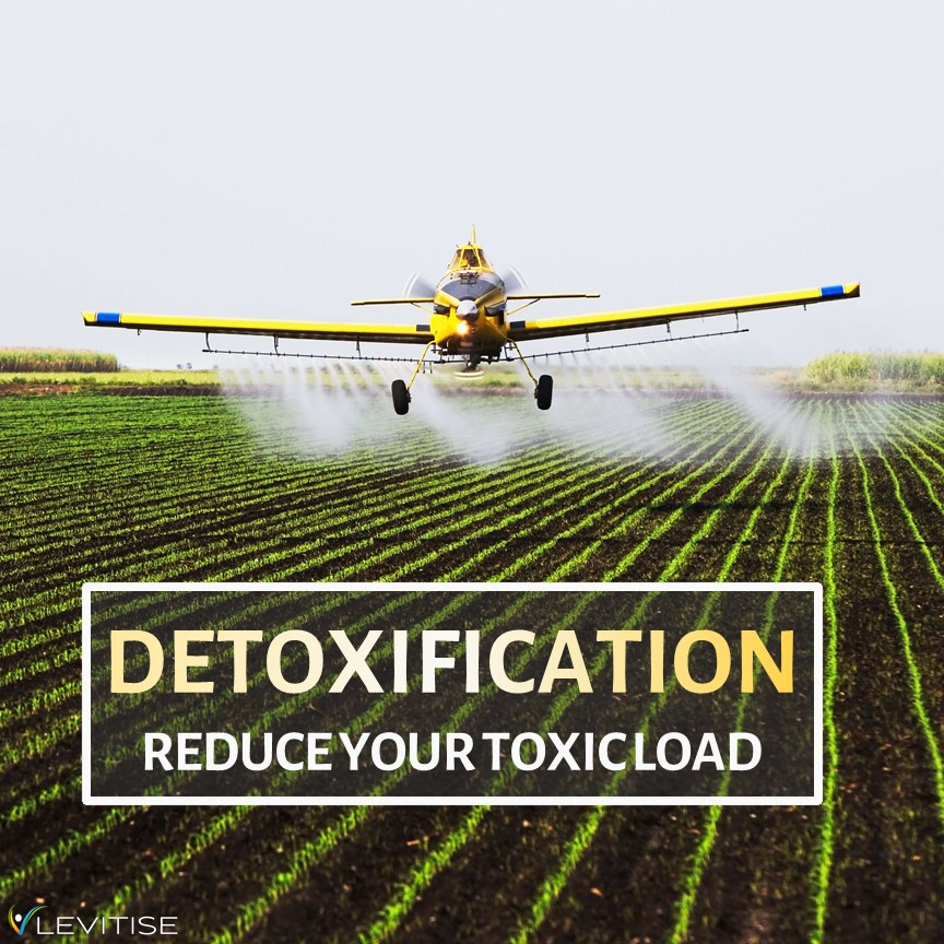 Upgrade Your Health by Reducing Your Toxic Load - Part 3: Detoxification