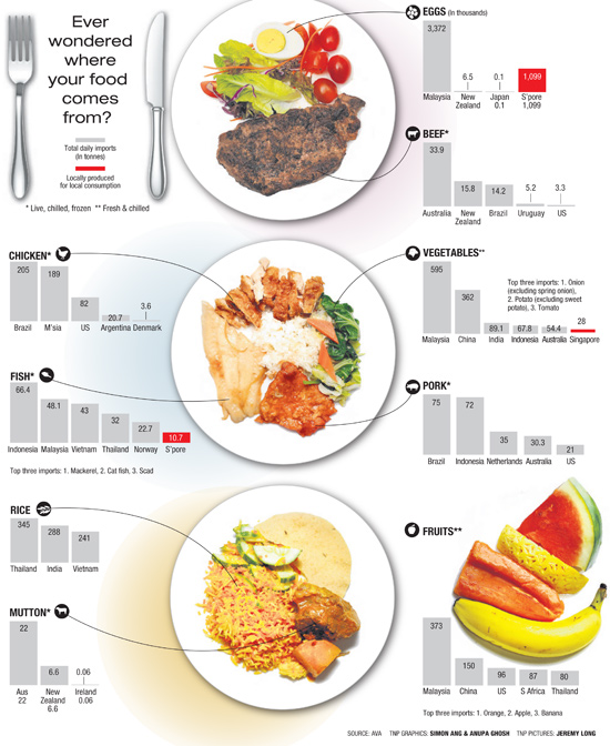 Infographic that shows which country's Singapore's food comes from