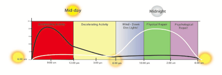Circadian rhythm - courtesy of the Chek Institute