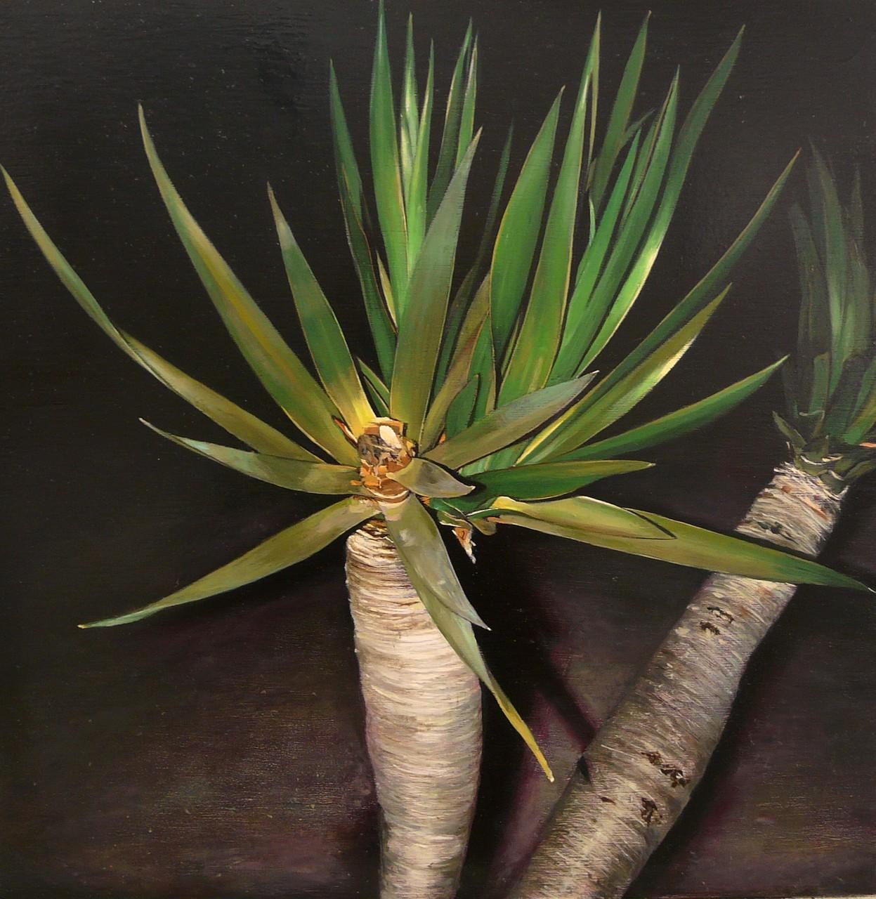 Palmera de noche, 40x40 cm