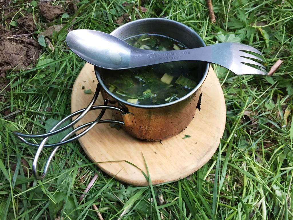 Wildnis-Suppe mit gesammelten Pflanzen