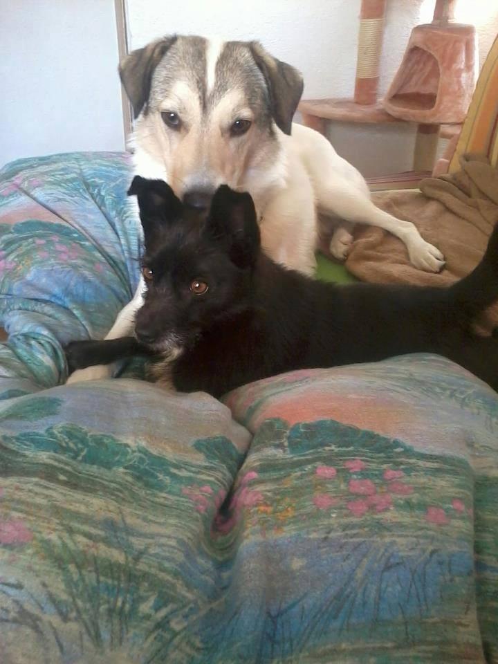 Ronnie und Mara - heute