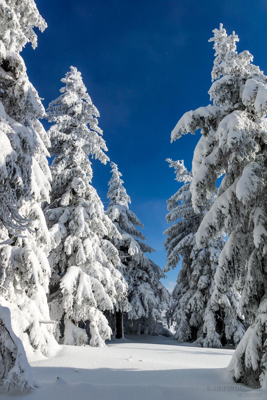 Winterstimmung auf dem Fichtelberg