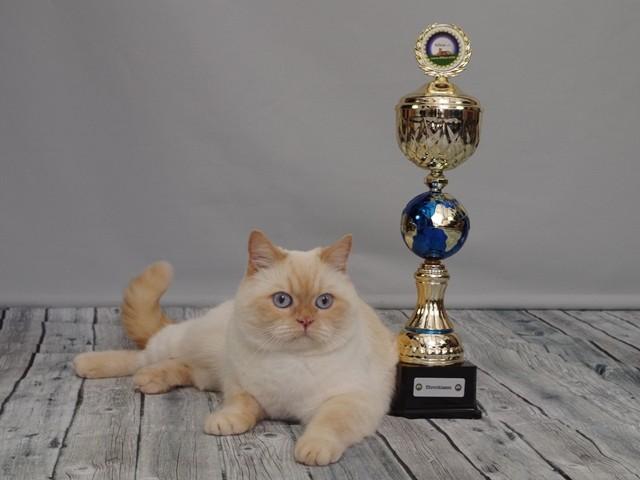 Geschafft! Welt-Premior