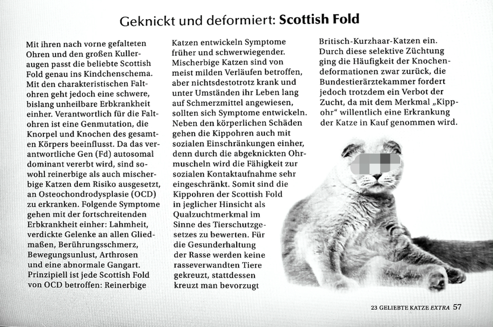 Screenshot Geliebte Katze Extra, Nr. 23, April 2021