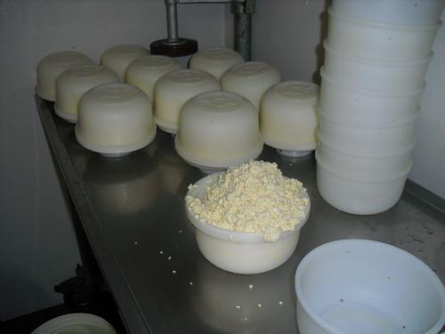 foto 4: wrongel in het kaasvaatje