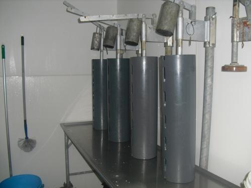 foto 5:de kaasjes staan onder de pers