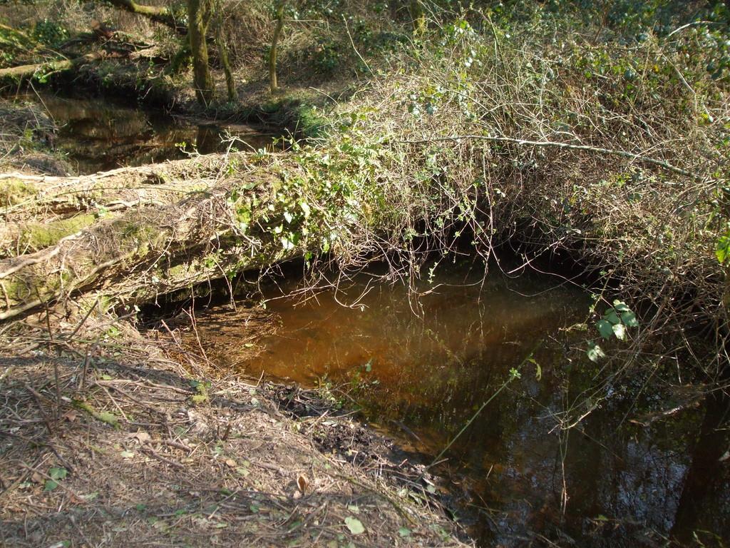 Conservation d'un abris piscicole n'obstruant pas l' écoulement