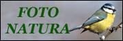 Logo 180x60