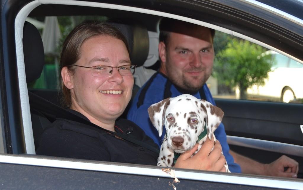 Nuri soll eine Rettungshundeausbildung machen - da sind wir schon sehr gespannt!