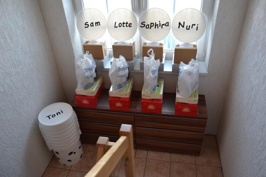 """Die Welpenpakete sind gepackt. Jeder Welpe bekommt noch eine Futtertonne, die wir mit dem typischen Dalmatiner""""muster"""" und dem Rufnamen versehen haben - echte Bastelarbeit :-)"""