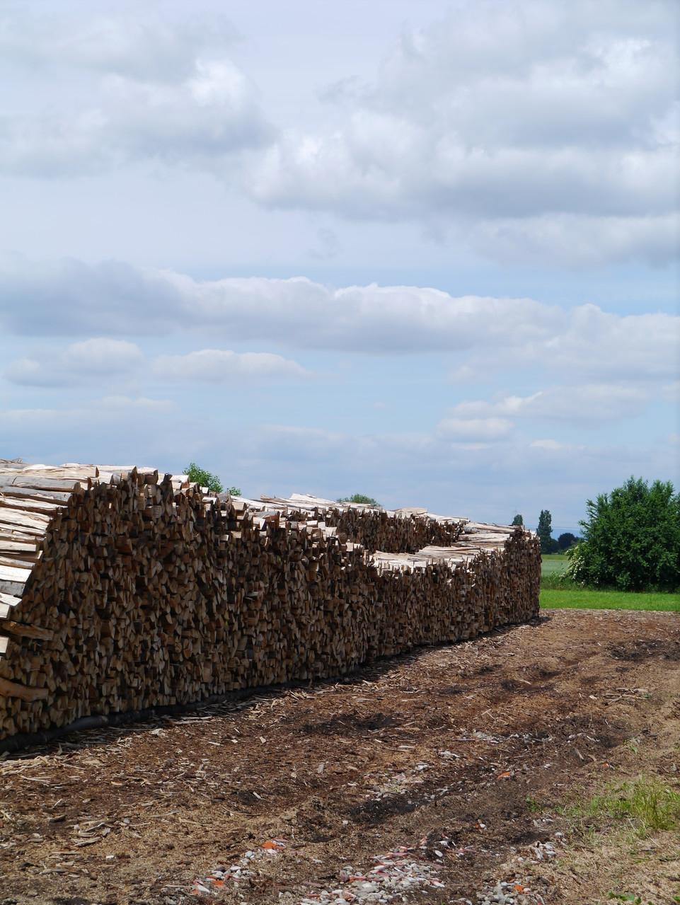 Holz für kalte Tage -Foto: Silke Bogorinski 2013