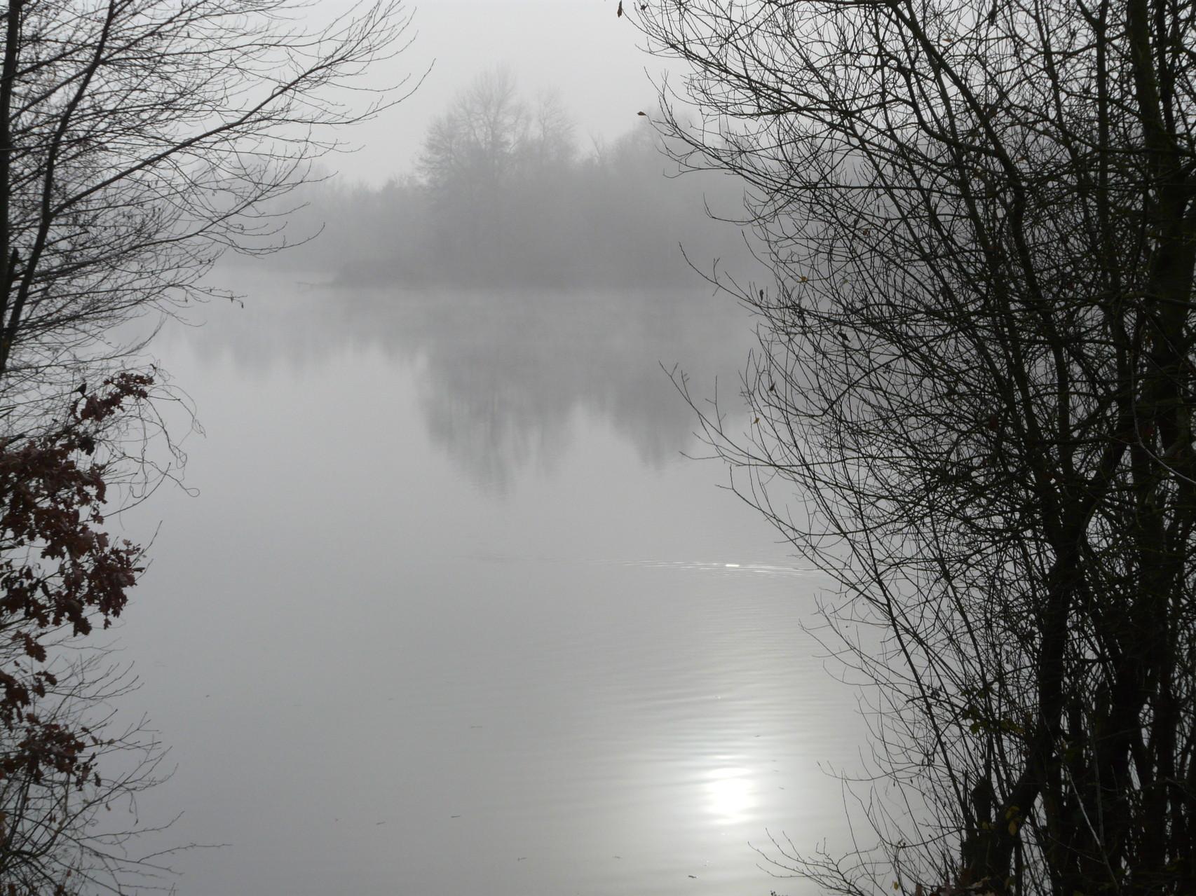 Wintersonne spiegelt sich im Steinrodsee  - Foto: Silke Bogorinski 2014