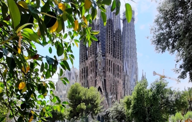 С 1 июля Саграда Фамилия в Барселоне будет работать ежедневно