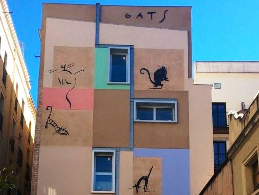 Коты и кошки с улицы Xuclà в Барселоне