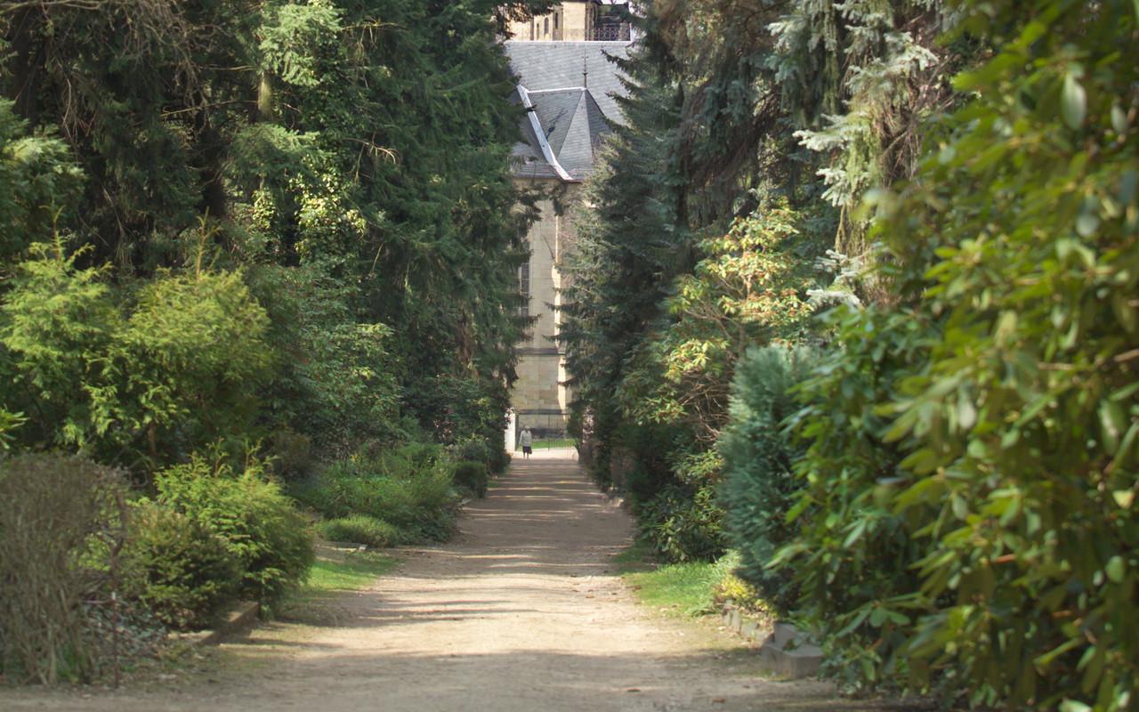 Friedhof Planitz l
