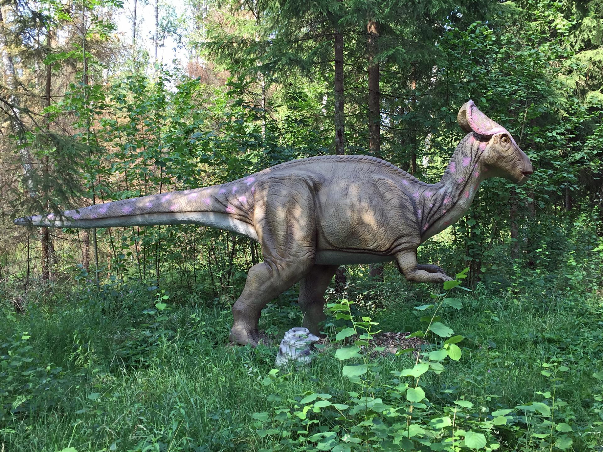 dinosaurier park raubonys private urlaubs homepage mit vielen tipps fotos sehensw rdigkeiten. Black Bedroom Furniture Sets. Home Design Ideas