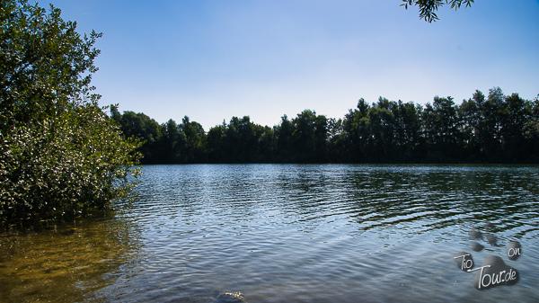 Unsere Wasserratte im Wiechumer See