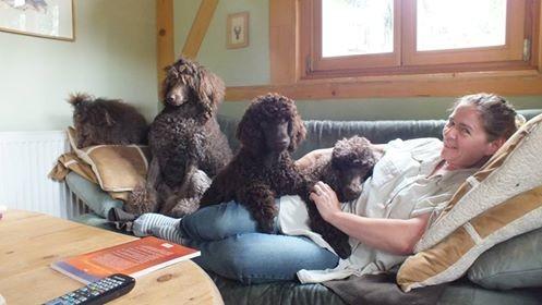 Die Couch ist zu klein