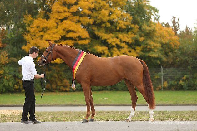 Foto: www.jutta-bauernschmitt.de