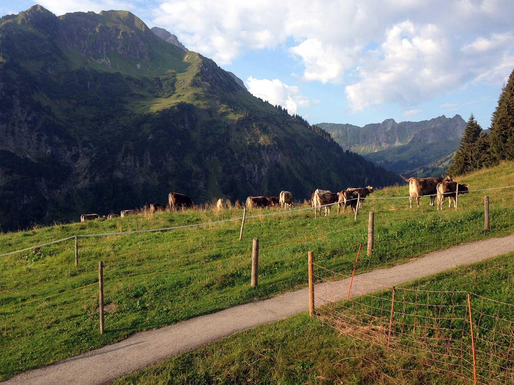 Berggasthof Bühlalpe, Kleinwalsertal – fantastische Aussichten!