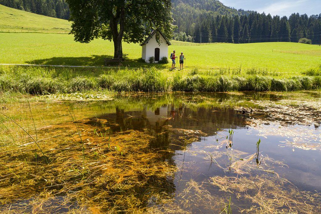 Moorgebiet Schwemm