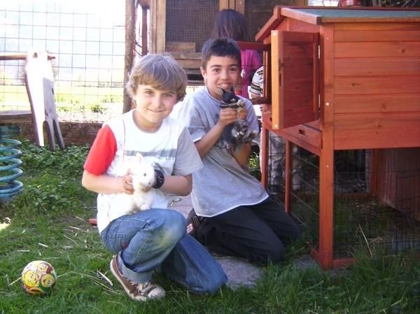 Kinder sind bei den Hasen