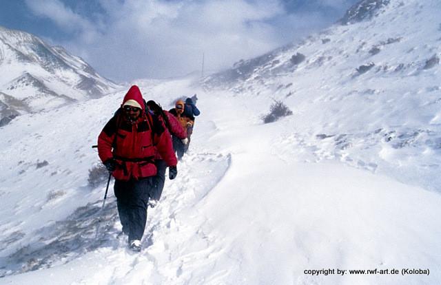 Überquerung des Longdangpasses in Nepal