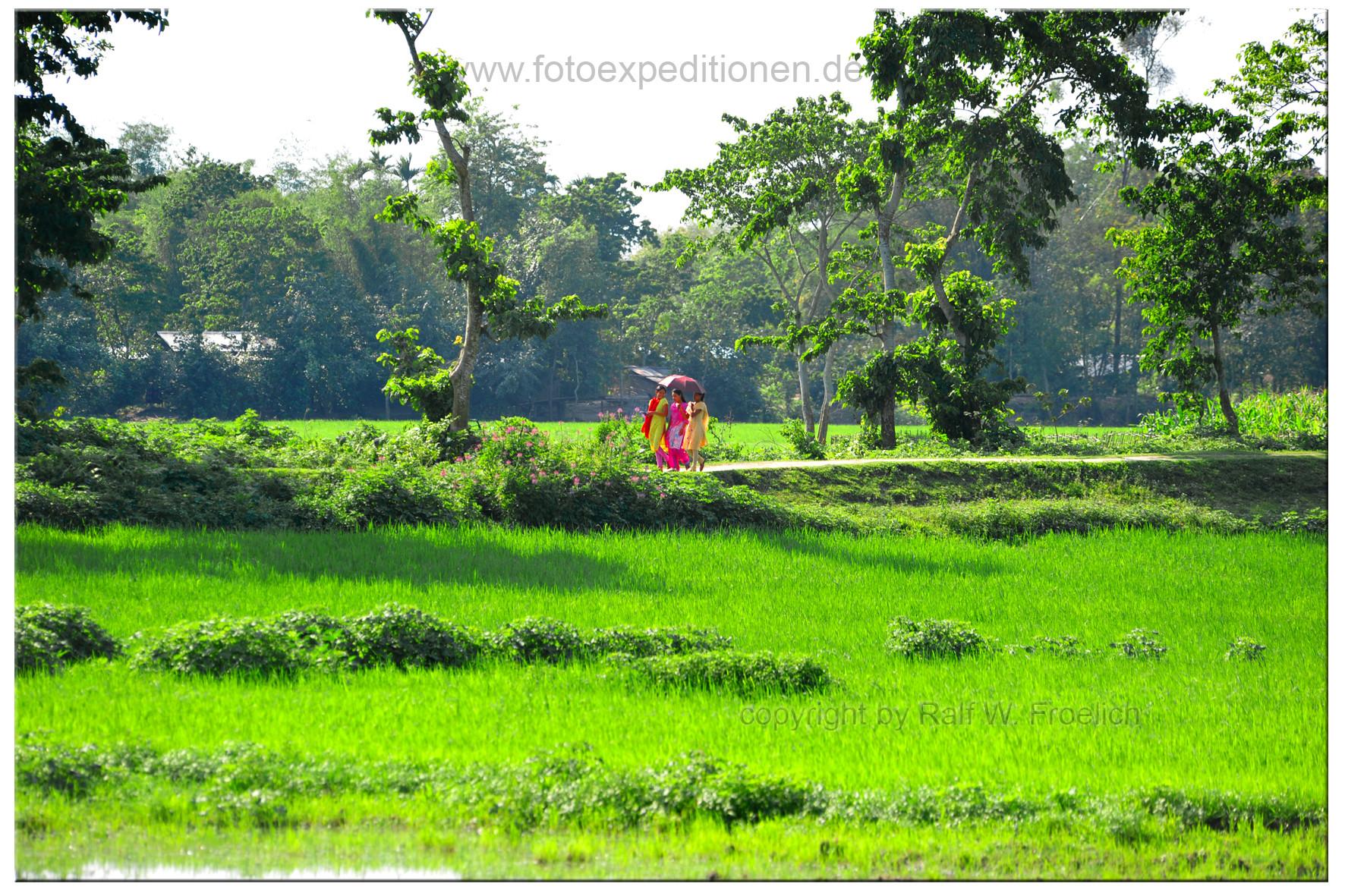 Assam, Indien