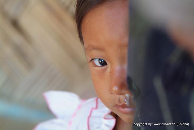 Neugierte, Nagaland