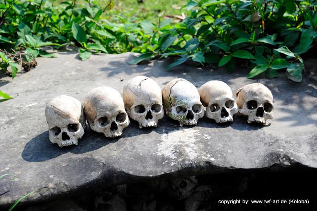 Schädelkult, Nagaland