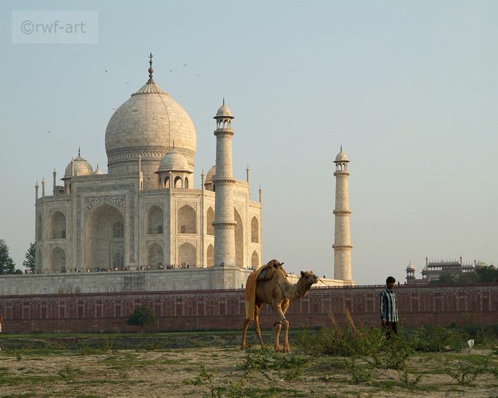 am Taj Mahala, Indien