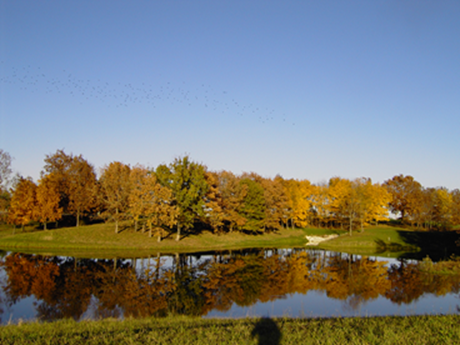 Seasons at Lake Raymond: Fall