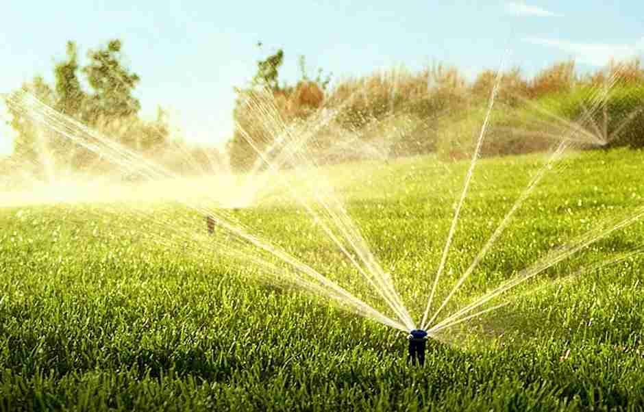 Professionelle Bewässerung für Garten und Landschaft