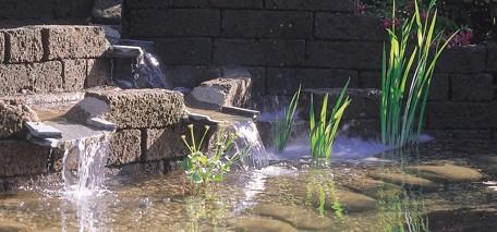Teich und Bachläufe